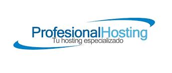 Profesional Hosting clientes, una sección detallada para tí